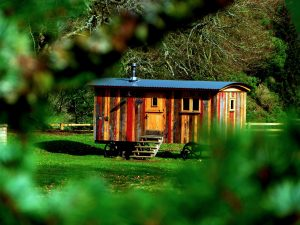 Micro Homes Could be the Answer to the State's Rising Home Prices